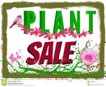 Goring Gap in Bloom Plant Sale @ Rectory Garden/ Goring Village Hall